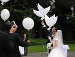 БИО Воздушный Шар Свадебный Голубь