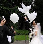 БИО Воздушные Шары на свадьбу